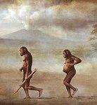 Австралопитеки ходили как современные люди