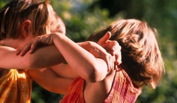 Маленькие драчуны – боремся с детской агрессией