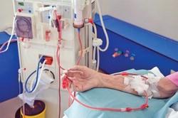 Причины загрязнения крови и возможности ее очищения